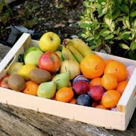 CIstella Montgrí de fruites ECO 4-6 persones