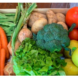 Cistella Individual Jo em Cuido amb fruita i verdura ECO