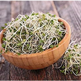 Germinat de broccoli ECO Vallés 70 gr
