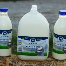 Llet fresca sencera ECO pasteuritzada en bidó de vaca