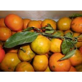 Mandarina Clemenules ECO 3kg València