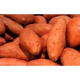 Moniato Taronja ECO de Rupià 1 kg
