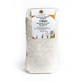 Farina integral (alcala xeixa i forment) 1 kg