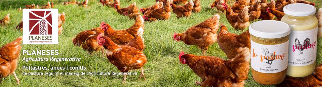 Planeses, agricultura regenerativa